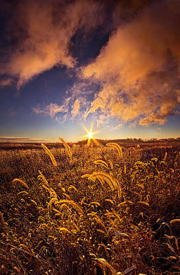 Bluesky Photograph - Nature's Romm With A View by Phil Koch