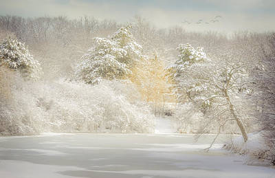 Snow Covered Trees Digital Art - Natures Winter Landscape by Julie Palencia