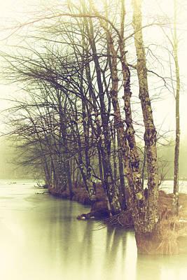 Natures Winter Slumber Print by Karol Livote