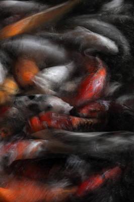 Goldfish Digital Art - Naturescape 55b by Otri Park