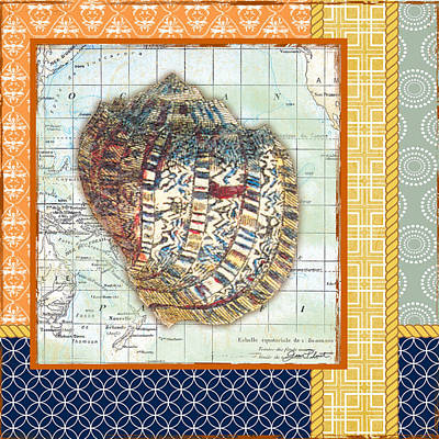 Nautical Journey-shell C Print by Jean Plout