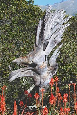 Sandpiper Digital Art - Nepenthes Bird by Barbara Snyder