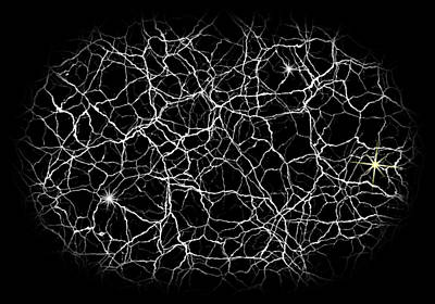 Neural Synapses Radiograph Of An Idea Print by Daniel Hagerman