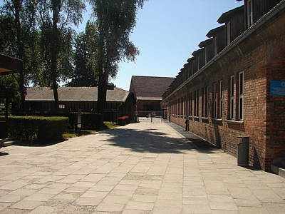 Auschwitz Photograph - Never Forget 8 by Mirek Bialy