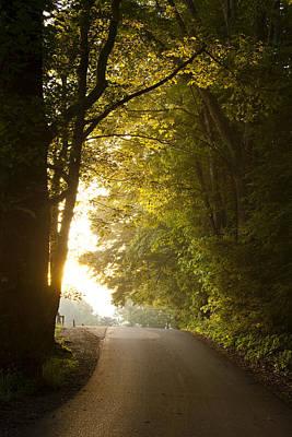 Sunlight Photograph - New Beginnings by Andrew Soundarajan