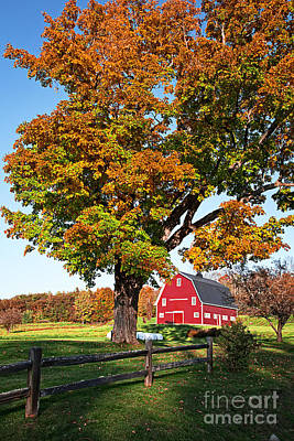 Red Barn. New England Photograph - New England Farm Fall Foliage by Edward Fielding