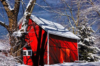 New England Winter Print by Karol Livote