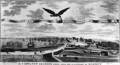American Eagle Painting - New Orleans, 1803 by Granger
