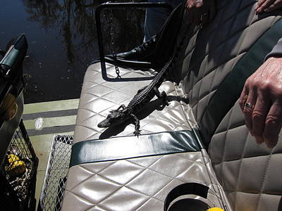 Orleans Photograph - New Orleans - Swamp Boat Ride - 1212101 by DC Photographer