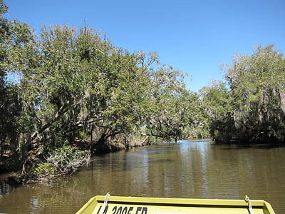 Rides Photograph - New Orleans - Swamp Boat Ride - 1212151 by DC Photographer