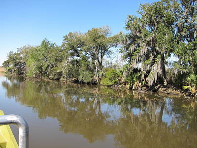 La Photograph - New Orleans - Swamp Boat Ride - 121232 by DC Photographer
