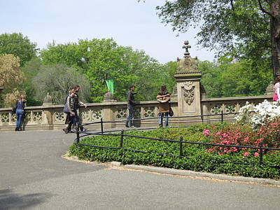 Carriage Photograph - New York City - Central Park - 12128 by DC Photographer