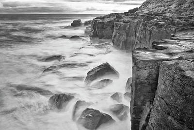 Curios Photograph - New Zealand, Asia, Catlins National by John Ford