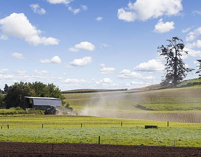 Pasture Scenes Photograph - New Zealand Farming by Les Cunliffe
