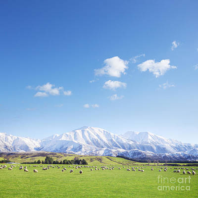 Beautiful Landscapes Photograph - New Zealand Farmland Square by Colin and Linda McKie
