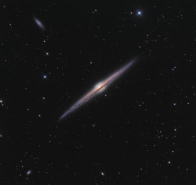 Selfie Photograph - Ngc 4565 Needle Galaxy by Celestial Images