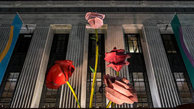 Frist Center Photograph - Night Roses by Glenn DiPaola