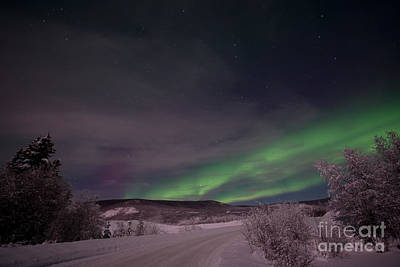 Wintry Landscape Photograph - Night Skies by Priska Wettstein