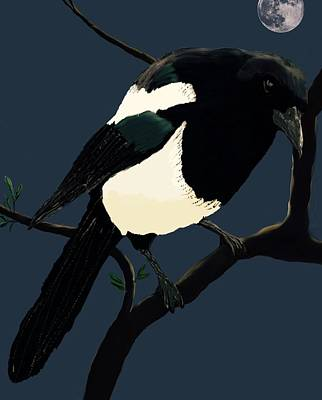 Magpies Digital Art - Night Watch  by Karen Harding