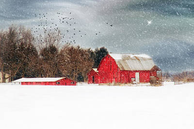Night's Snow Dust Print by Mary Timman