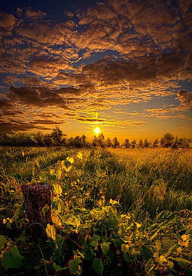Wind Photograph - No Hurry by Phil Koch