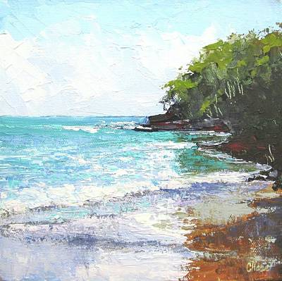 Painting - Noosa Heads Main Beach Queensland Australia by Chris Hobel