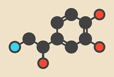 Noradrenaline Hormone Molecule Print by Molekuul