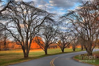Kerr County Photograph - North Carolina Sloan Park Sunset by Adam Jewell