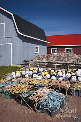 Lobster Traps Photograph - North Rustico by Elena Elisseeva