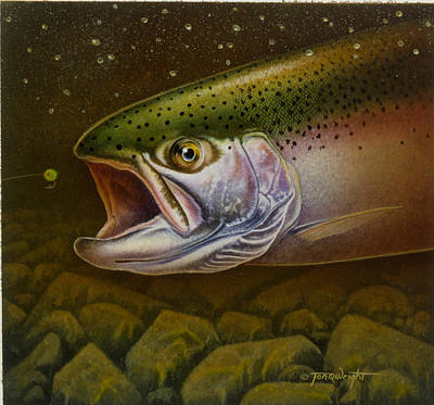 Angling Painting - North Shore Steelhead by Jon Q Wright