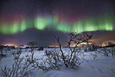 3.14 Photograph - Northern Lights - Creative Editing by Frank Olsen