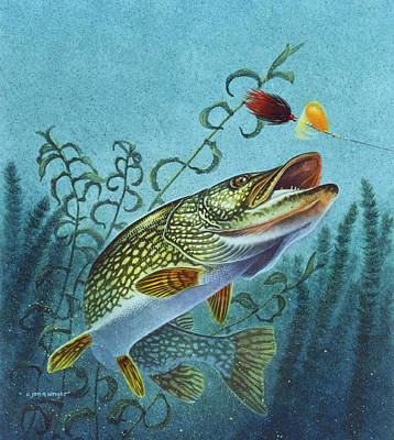Angling Painting - Northern Pike Spinner Bait by Jon Q Wright