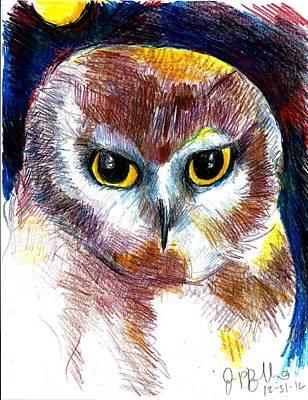Northern Saw Whet Owl  Print by Jon Baldwin  Art