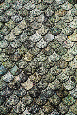 Colourful Digital Art - Norwegian Fish Scale Pattern Slate Roof by Hakon Soreide