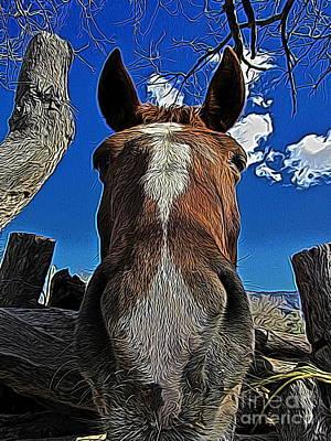 Llama Digital Art - Nosey II by Jen  Brooks Art
