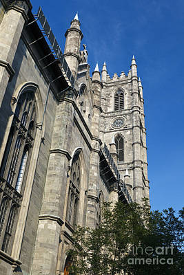 Que Photograph - Notre Dame Cathedral Montreal by Jason O Watson