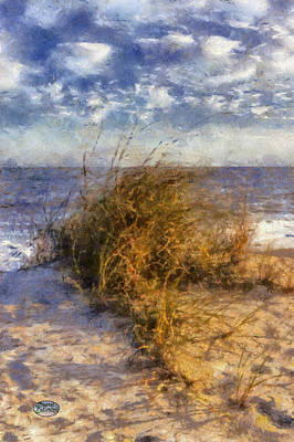 Atlantic Coast Digital Art - November Dune Grass by Daniel Eskridge