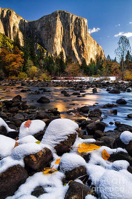 Yosemite Photograph - November Morning by Anthony Bonafede