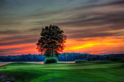 Tiger Woods Photograph - Number 4 The Landing by Reid Callaway