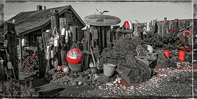 Beach Theme Decorating Photograph - Nye Beach Bums Seaweed Bungalows by Thom Zehrfeld