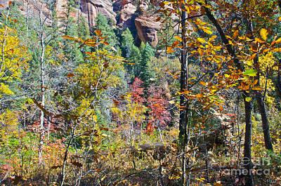 West Fork Digital Art - Oak Leaves by Brian Lambert