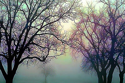Oak Trees In The Mourning Myst Print by Wernher Krutein