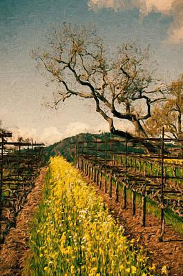 Oaks In The Vineyard Print by John K Woodruff