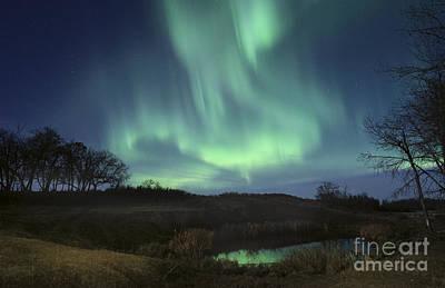 Alberta Prairie Landscape Photograph - October Aurora by Dan Jurak