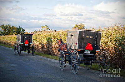 Amish Photograph - October Buggies by David Arment
