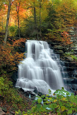 October Foliage Surrounding Erie Falls Print by Gene Walls