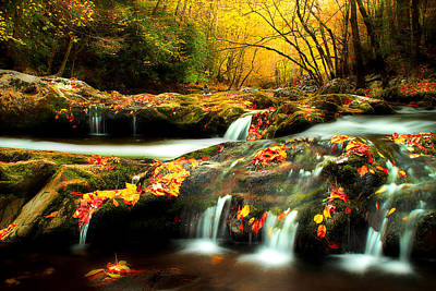 Fall Scenes Photograph - October In The Smokies by Michael Eingle
