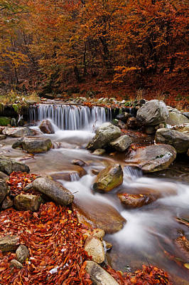 October Stream Print by Mircea Costina Photography