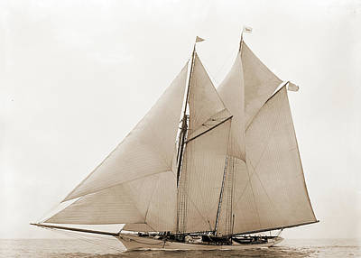 Oenone, Oenone Schooner, Yachts Print by Litz Collection