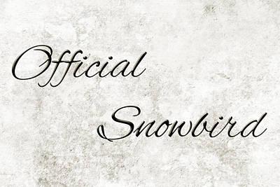 Senior Digital Art - Official Snowbird 3 by Andee Design